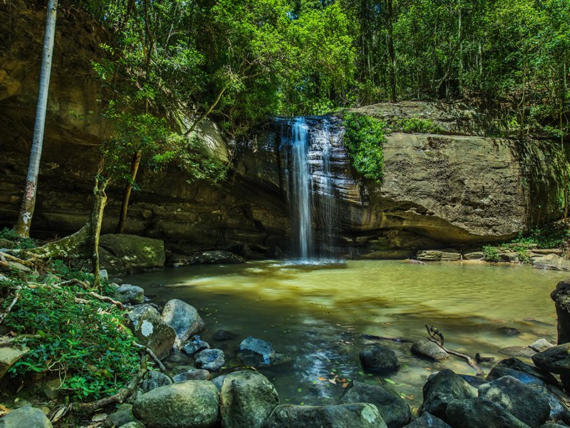 serenity-falls-and-swimming-hole-in-buderim